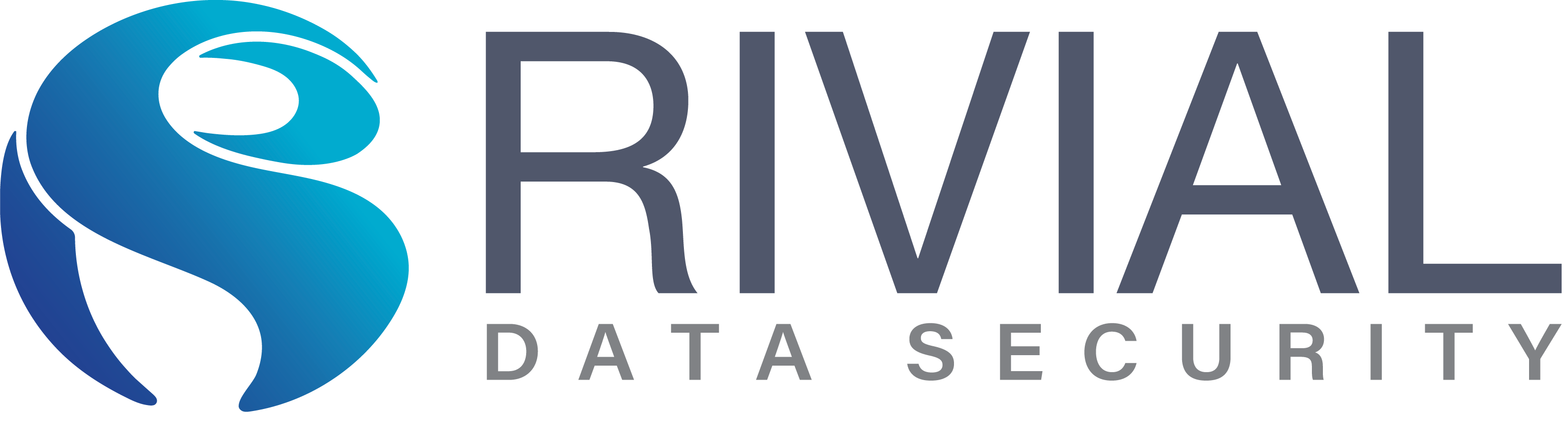Rivial Data Security Logo