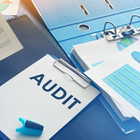 audit 400x200
